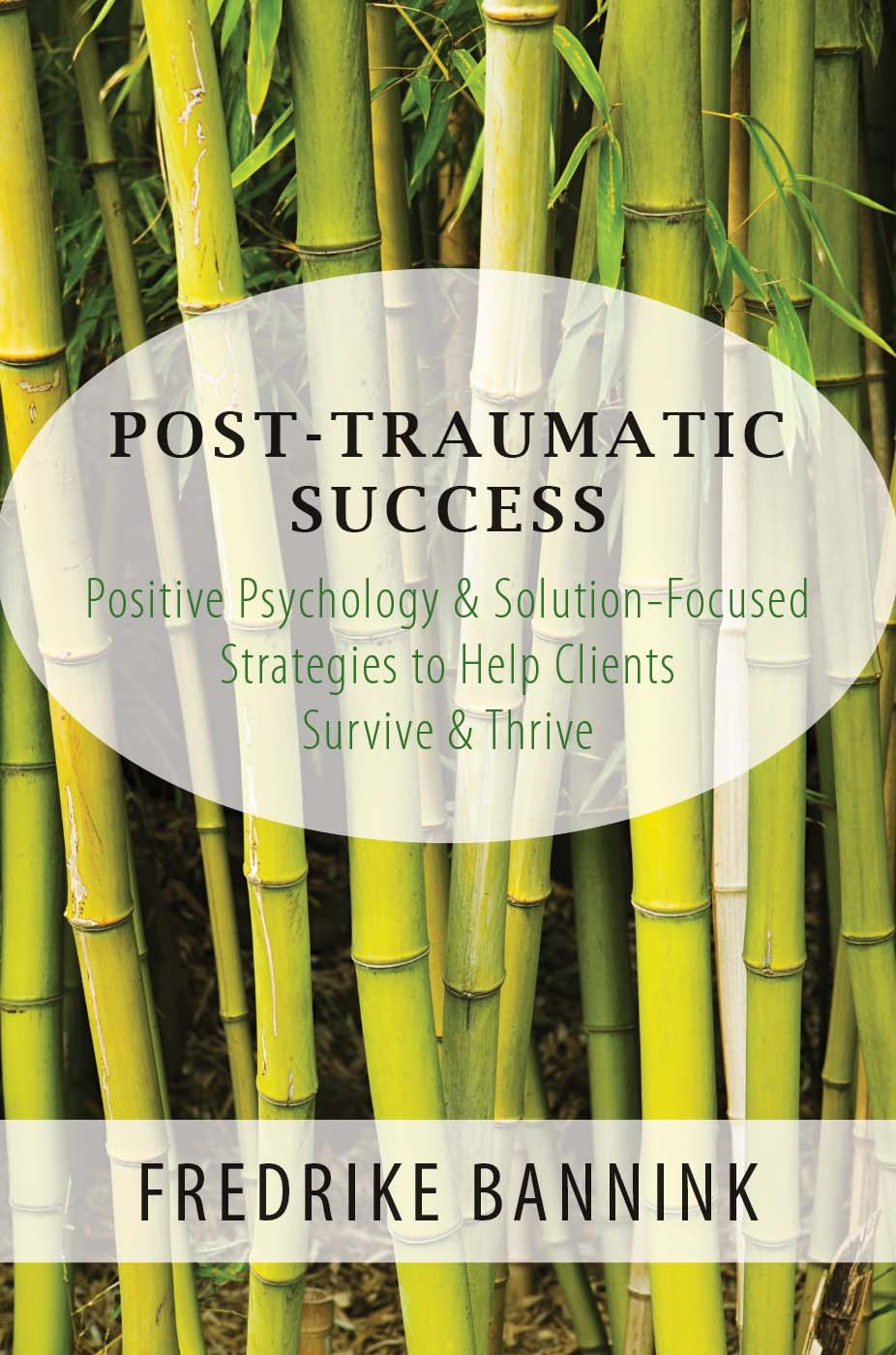 Cover image Post Traumatic Success